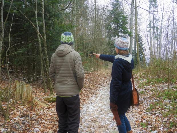 Balade hivernale en forêt
